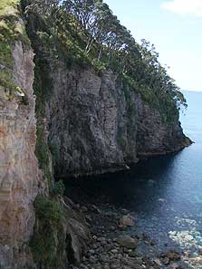 Te Pare Pa. The steep cliffs made for a well defended pa. Photo: Melanie Charters.