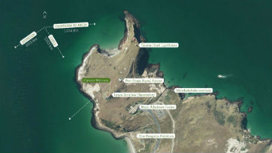 taiaroa-head-map-390.jpg